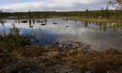 Lavvologen - Sevettijärvi (Finland) 2010