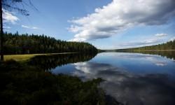 Den Norske Lavvologe - Finnskogen 2013, 7 mil