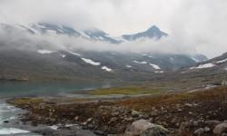 Den Norske Lavvologe - Falketind 2013